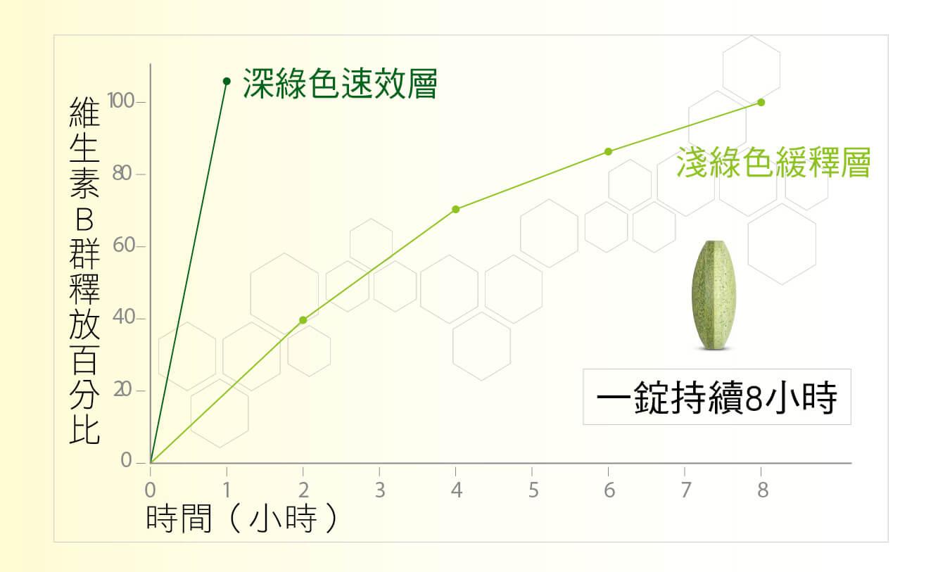 維生素B群釋放百分比 深綠色速效層 淺綠色緩釋層 一錠持續8小時