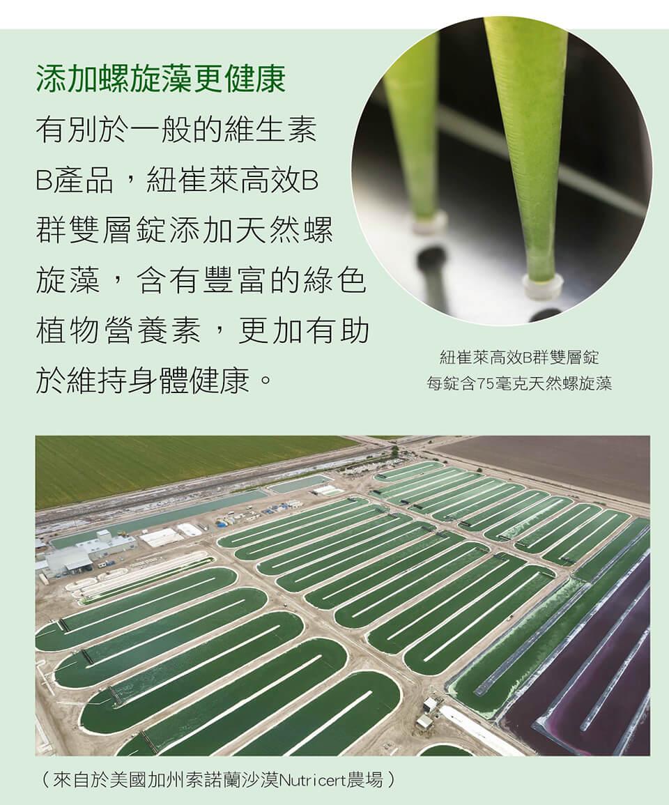 添加螺旋藻更健康 有別於一般的維生素B產品,紐崔萊高效B群雙層錠添加天然螺旋藻,含有豐富的綠色植物營養素,更加有助於維持身體健康。 紐崔萊高效B群雙層錠 每錠含75毫克天然螺旋藻 (來自於美國加州索諾蘭沙漠Nutricert農場)